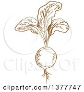 Clipart Of A Brown Sketched Radish Royalty Free Vector Illustration