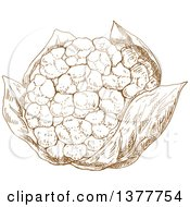Clipart Of A Brown Sketched Cauliflower Royalty Free Vector Illustration