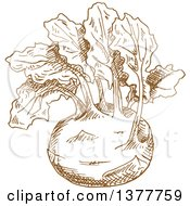 Clipart Of A Brown Sketched Kohlrabi Royalty Free Vector Illustration by Vector Tradition SM