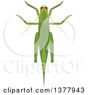 Clipart Of A Grasshopper Royalty Free Vector Illustration