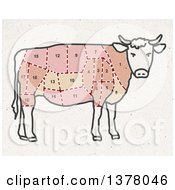 Cow Divided Up Showing Different Cuts Of Meat On Fiber Texture