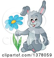 Clipart Of A Happy Gray Bunny Rabbit Holding A Flower Royalty Free Vector Illustration