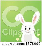 Clipart Of A Happy White Bunny Rabbit Over A Gradient Green Background Royalty Free Vector Illustration by visekart