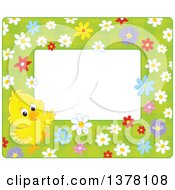 Horizontal Border Frame Of A Cute Yellow Chick With Flowers On Green Around Text Space