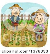 Happy White Senior Couple Working In Their Vegetable Garden