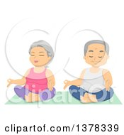 Happy White Senior Couple Doing Relaxing Yoga
