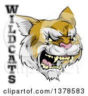 Clipart Of A Roaring Aggressive Bobcat Mascot Head And WILDCATS Text Royalty Free Vector Illustration by AtStockIllustration