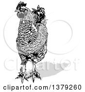 Clipart Of A Black And White Cock Rooster With A Gray Shadow Royalty Free Vector Illustration by dero