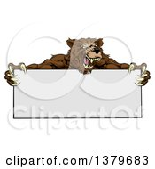 Clipart Of A Fierce Buff Muscular Grizzly Bear Man Holding A Blank Sign Royalty Free Vector Illustration