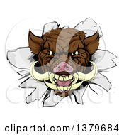 Clipart Of A Brown Boar Head Breaking Through A Wall Royalty Free Vector Illustration