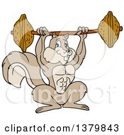 Cartoon Muscular Bodybuilder Squirrel Lifting A Barbell With Nuts