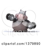 Clipart Of A 3d Henry Hippo Character Working Out With Dumbbells On A White Background Royalty Free Illustration