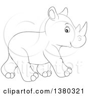 Black And White Cute Baby Rhinoceros Walking