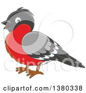 Clipart Of A Cute Bullfinch Bird Royalty Free Vector Illustration