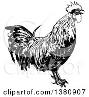 Clipart Of A Grayscale Rooster Royalty Free Vector Illustration by dero
