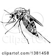 Clipart Of A Black And White Mosquito And Gray Shadow Royalty Free Vector Illustration by dero