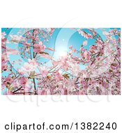 Clipart Of A Background Of Watercolor Styled Branches And Pink Cherry Blossoms Against A Spring Sky Royalty Free Illustration by KJ Pargeter