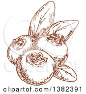 Clipart Of Brown Sketched Blueberries Royalty Free Vector Illustration