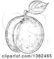 Clipart Of A Gray Sketched Apricot Royalty Free Vector Illustration by Vector Tradition SM
