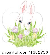 Cute White Bunny Rabbit Behind A Cluster Of Spring Crocus Flowers