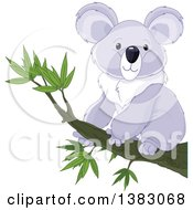 Clipart Of A Cute Koala Sitting On A Branch Royalty Free Vector Illustration