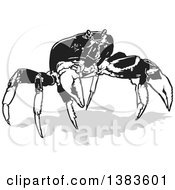 Clipart Of A Black And White Crab With A Shadow Royalty Free Vector Illustration by dero