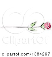 Pink Long Stemmed Rose
