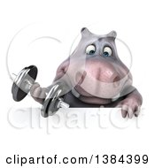 Clipart Of A 3d Henry Hippo Character Working Out With A Dumbbell Over A Sign On A White Background Royalty Free Illustration