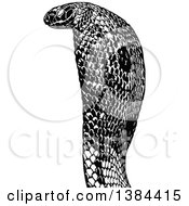 Clipart Of A Black And White Cobra Snake Royalty Free Vector Illustration by dero