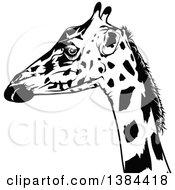 Poster, Art Print Of Black And White Giraffe