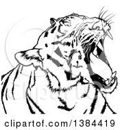 Clipart Of A Black And White Yawning Tiger Royalty Free Vector Illustration by dero