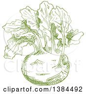 Clipart Of A Sketched Green Kohlrabi Royalty Free Vector Illustration by Vector Tradition SM