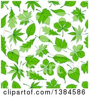 Seamless Background Pattern Of Green Oak Maple And Birch Leaves