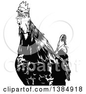 Clipart Of A Black And White Crowing Rooster Royalty Free Vector Illustration