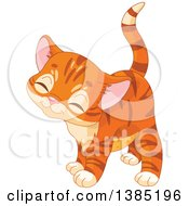 Clipart Of A Cute Ginger Tabby Kitten Royalty Free Vector Illustration by Pushkin