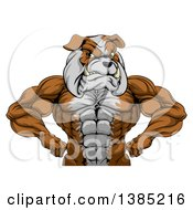 Clipart Of A Muscular Tough Bulldog Man Mascot Flexing From The Waist Up Royalty Free Vector Illustration by AtStockIllustration