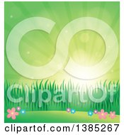 Clipart Of A Spring Background Of Flowers Grass And Sunshine In A Green Sky Royalty Free Vector Illustration