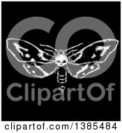 Poster, Art Print Of Black And White Moth With A Skull Head On Black