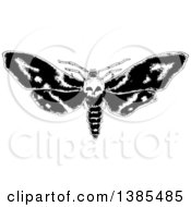 Clipart Of A Black And White Moth With A Skull Head Royalty Free Vector Illustration