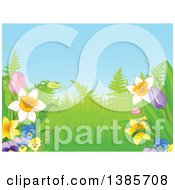 Garden Background With Ferns And Spring Flowers