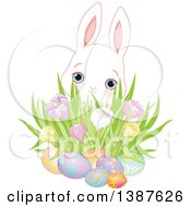 Cute White Bunny Rabbit Behind A Cluster Of Spring Crocus Flowers And Easter Eggs