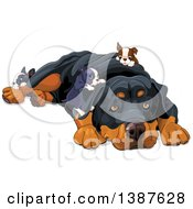 Clipart Of A Cute Rottweiler Dog Resting And Being Crawled On By Puppies Royalty Free Vector Illustration by Pushkin