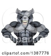Clipart Of A Muscular Gray Wolf Man Mascot Flexing From The Waist Up Royalty Free Vector Illustration