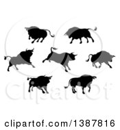Clipart Of Black Silhouetted Bulls Royalty Free Vector Illustration