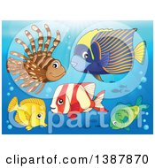Clipart Of Saltwater Marine Fish Under The Sea Royalty Free Vector Illustration