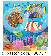 Clipart Of Saltwater Marine Fish At A Reef Royalty Free Vector Illustration