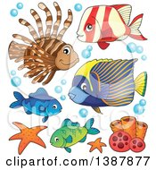 Clipart Of Saltwater Marine Fish Royalty Free Vector Illustration