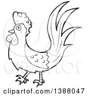 Clipart Of A Cartoon Black And White Lineart Roooster Chicken Royalty Free Vector Illustration by lineartestpilot