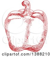 Clipart Of A Sketched Red Bell Pepper Royalty Free Vector Illustration