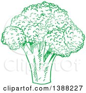 Clipart Of A Sketched Green Head Of Broccoli Royalty Free Vector Illustration by Vector Tradition SM